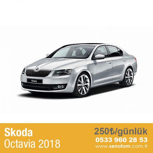 Skoda-Octavia1
