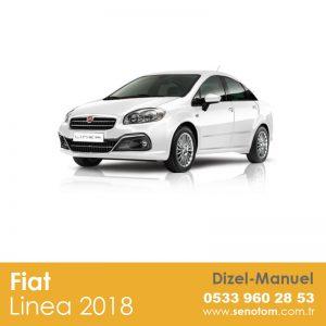 adana car rental companies